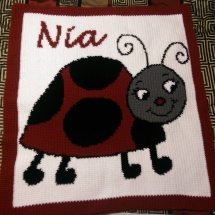 customer-crochet-art Naomi's ladybug