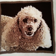 customer-crochet-art phyllis Rocky